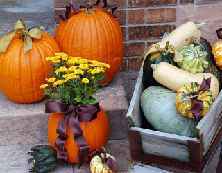 Four Simple Decorating Ideas for Fall