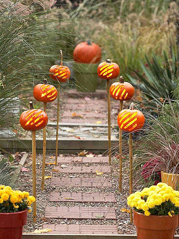 Pumpkins on a garden path