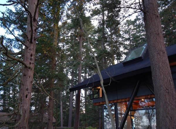 Swinomish Indian Reserve Cabin 4