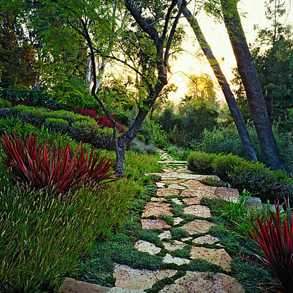 Touches of red on a garden path