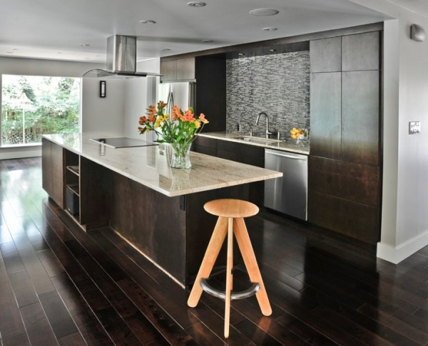 dark wood floors modern kitchen