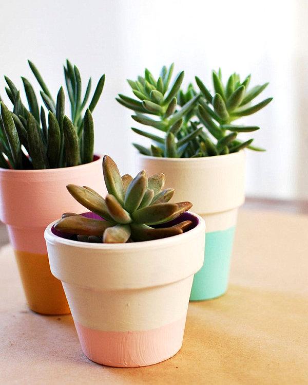 A color block terra cotta planter DIY project