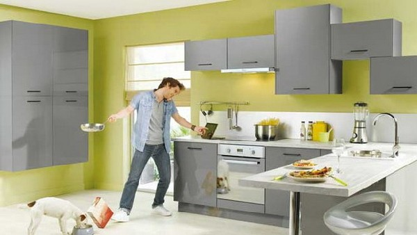 Ergonomic lemon green and gray kitchen with stylish for Grey and green kitchen