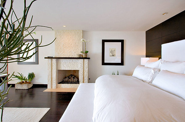 Interesting potted plants in a contemporary bedroom