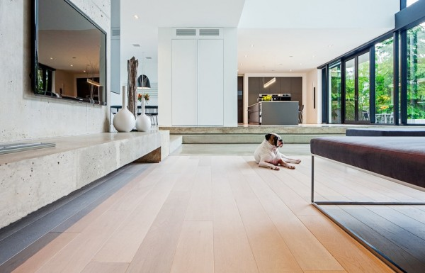 pet flooring furniture