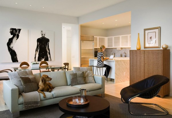 Pet Friendly Apartments New York