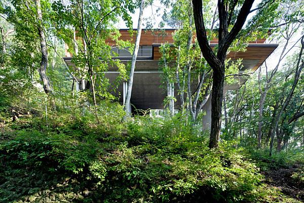Suspended villa in Japan