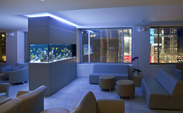 An aquarium at night