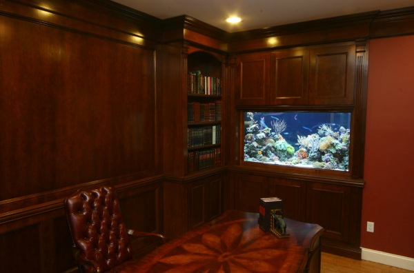 Aquarium for the home office