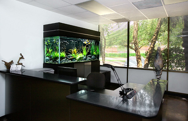 Black aquarium for the office