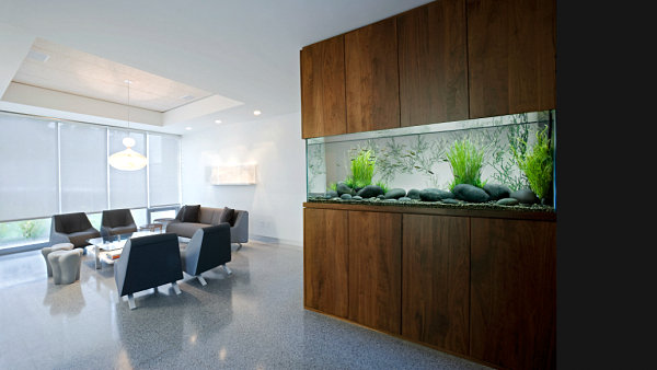 Wall aquarium with modern style