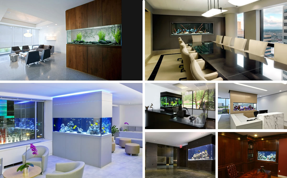 Fish tank in kitchen - 10 Cool Fish Tanks For Your Office