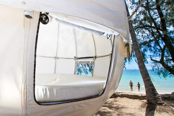cozy Cocoon Tree Tent