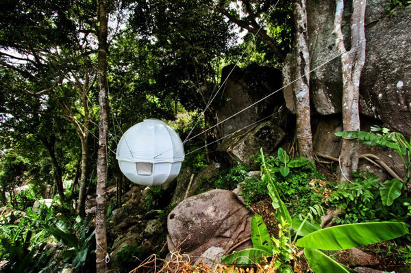 forest living - Cocoon Tree Tent