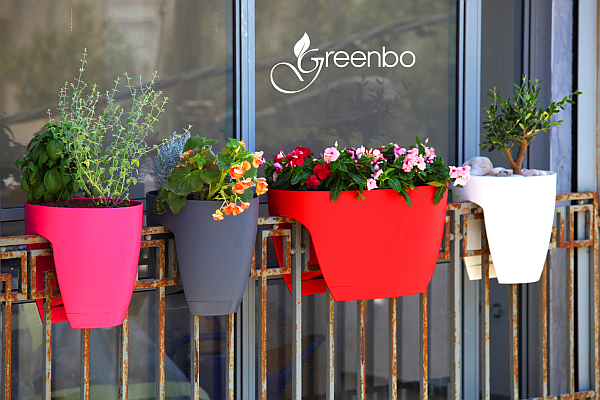 greenbo colorful planters