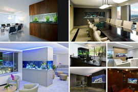 home office aquariums