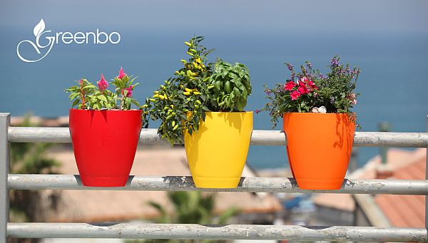 orange red and yellow planters