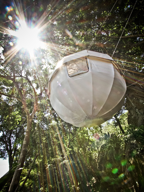 View In Gallery Stylish Cocoon Tree Tent Good Ideas