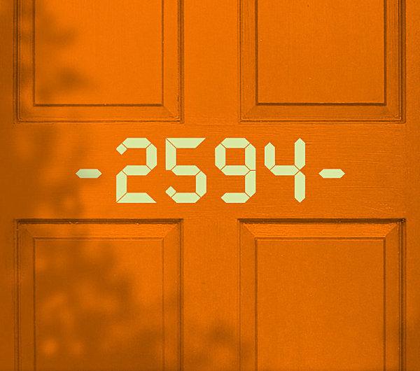 Digital style door decal