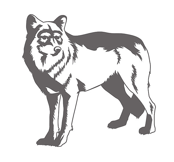 Wolf wall decal