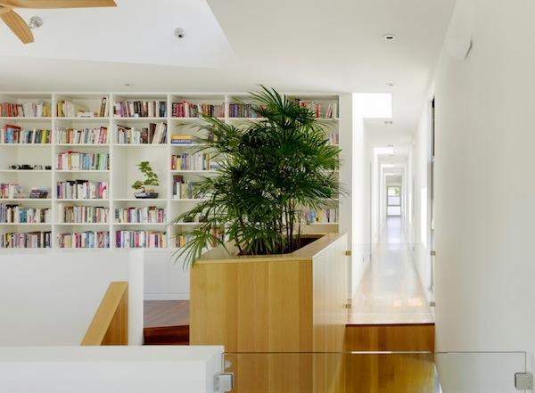 houseplants planter hallway