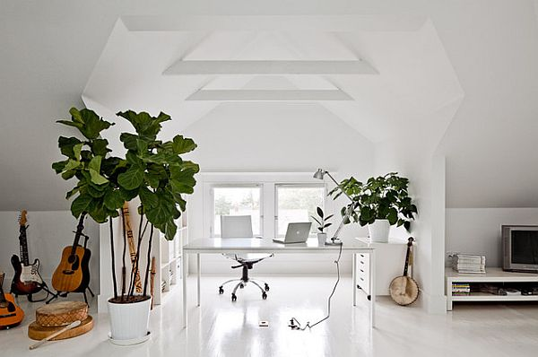 White painted home office with contrasting green plants