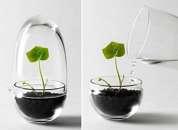 Chic Grow Greenhouse