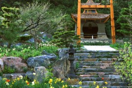 Extravagant and exquisite Japanese garden design with a touch of flair