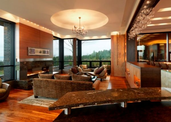 View In Gallery Modern Fireplace And Snazzy Ceiling Give These Interiors A  Refined Appeal