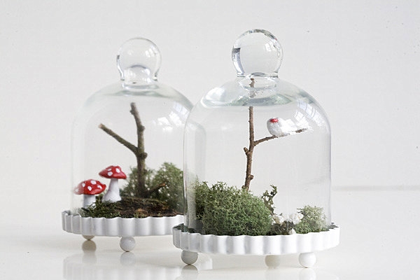 Terrarium wedding favors