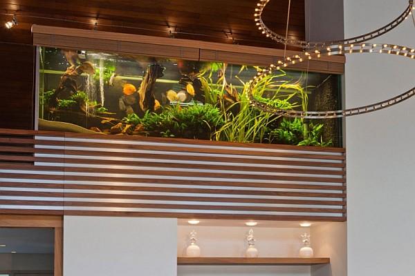 home with aquarium