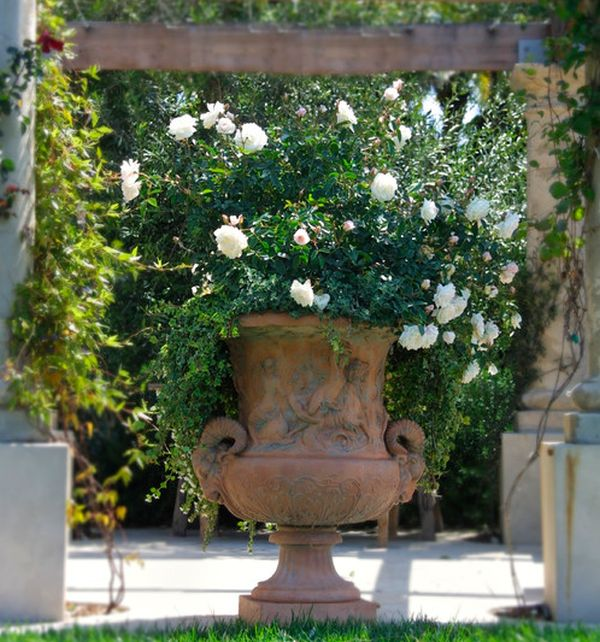 Artistic urn overflowing with blooms of white roses makes for a delightful art addition