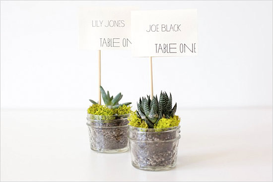 DIY succulent place card holders