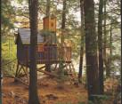 Deluxe tree house
