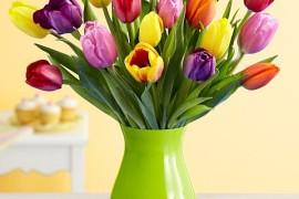 Easter Floral Arrangements for a Stunning Celebration