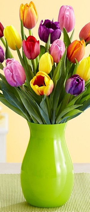 Easter flowers - tulips