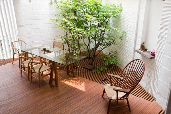 Interior Gardens in modern homes (1)