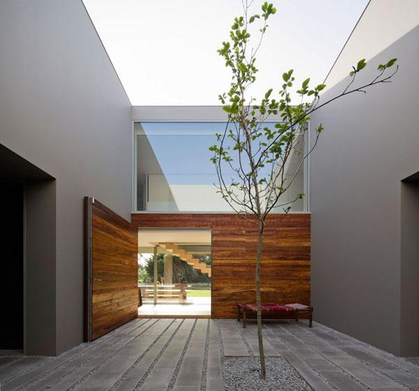 Interior Gardens in modern homes (12)