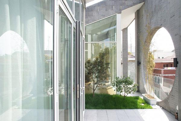 Interior Gardens in modern homes (15)