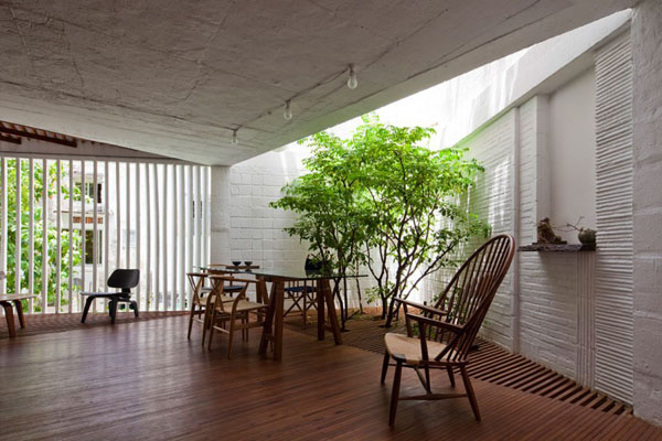 Interior Gardens in modern homes (2)