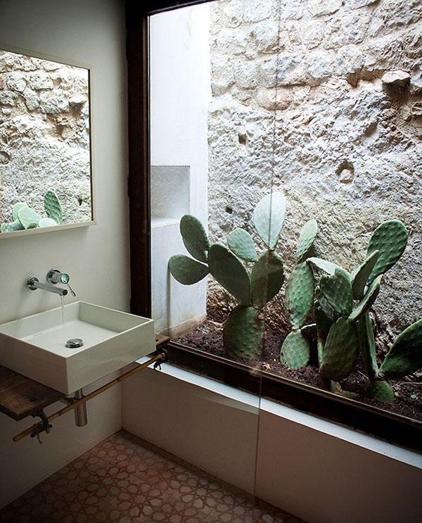 Interior Gardens in modern homes (7)