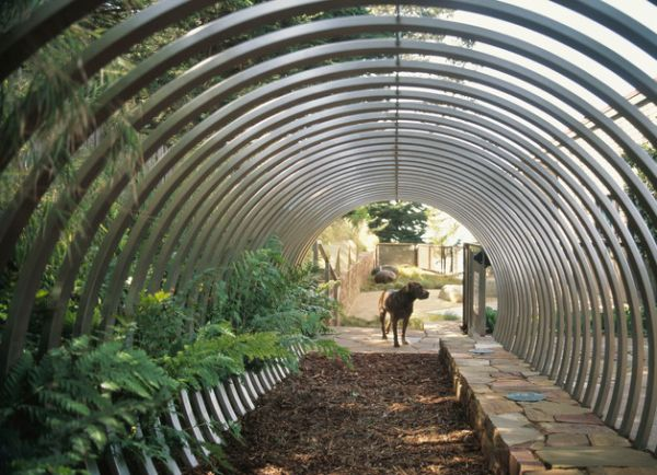 Metallic tunnel makes for a visually distinct addition to your garden
