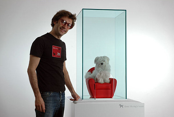 Modern transparent doghouse