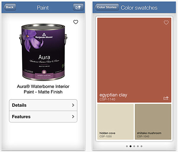 Paint details and color swatches from Color Capture
