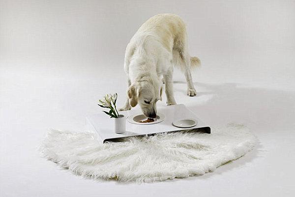 Room service tray dog food bowls