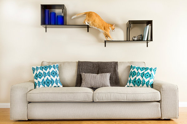 Sophia Wall Mounted Cat Tree Modern Pet Furniture & Accessories for Design Lovers