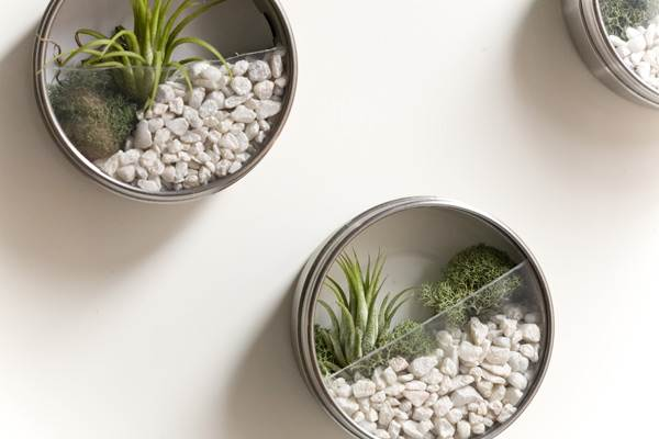 Terrarium garden DIY wedding favor