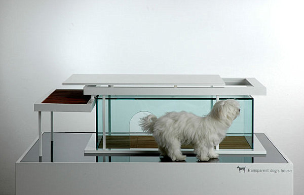 Transparent dog house