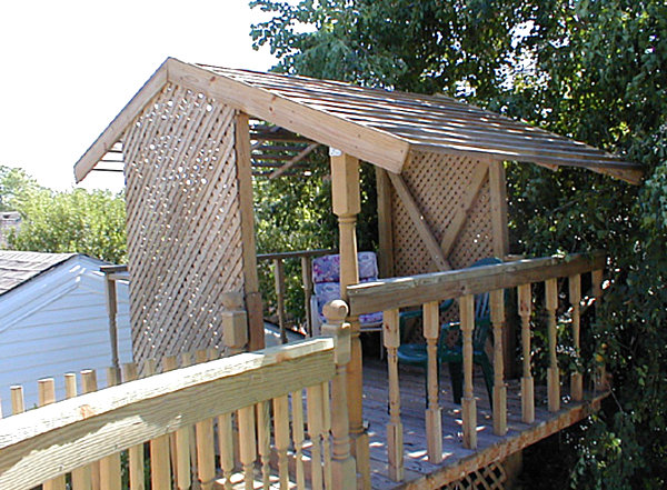 Treehouse with lattice work