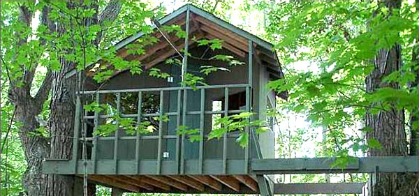 Contemporary Simple Kids Tree House Twotree Treehouse Design In Decorating